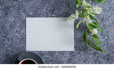 Mock up with card, bird-cherry tree flowers and cup of coffee on gray rustic background.