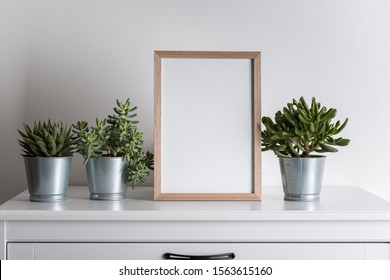 mock up made from photo frame in scandinavian minimalist interior with succulents on gray commode on white background
