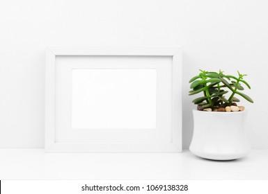 Mock up white frame and succulent plant in pot on a shelf or desk. White color scheme. Landscape frame orientation.