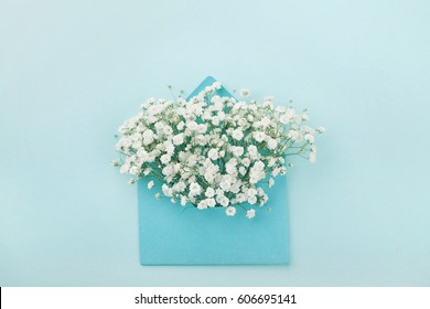 Mockup of gypsophila flowers in envelope on blue background top view in flat lay style