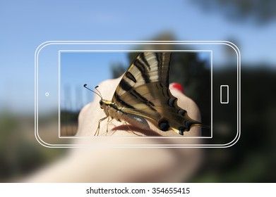 mockup of Smartphone photographing a butterfly
