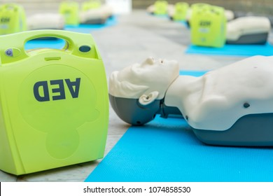 model for cpr and AED training. (automated external defibrillator)