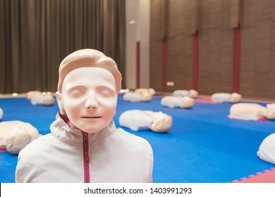 model dummy for CPR training medical in class.
