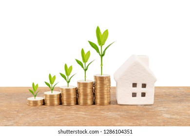 Model house and coin stack with tree on white background mortgage saving concept