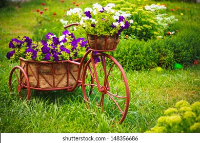 Model of an old bicycle equipped with basket of flowers / Bicycle in a garden