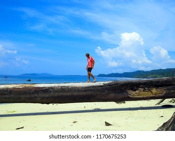 A model in red flowery shirt strolling on fallen tree trunk on a pristine beach with clear blue water sea in the background and bright blue sky during holidays at Andaman Island, India