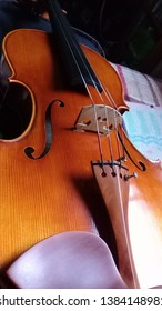 model viola with boxwood tailpiece.