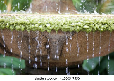 A model waterfall with green moss in nature which give feeling of relax.