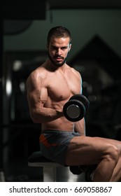 Model Working Out Biceps In A Gym On Bench - Dumbbell Concentration Curls