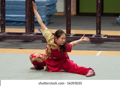 MODENA, ITALY - FEBRUARY 02: Students form Beijing sports university, perform Wushu Kung Fu routines during the show in Modena, Italy on february 2, 2010 at Palapanini building.