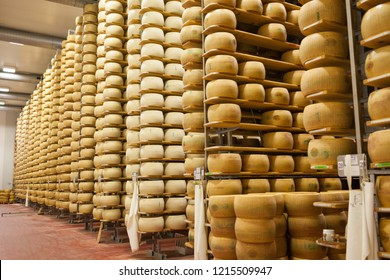 Modena, Italy - October 2018: Long rows of Parmigiano Reggiano cheese wheels being aged in maturation rooms for a minimum of 12 months