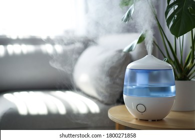 Modern air humidifier and houseplant on table in living room. Space for text