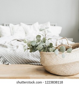 Modern apartment interior design. Bed and eucalyptus branch.