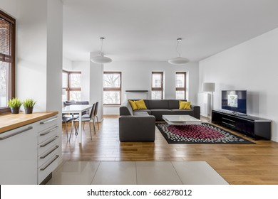 Modern apartment with open living room and kitchenette