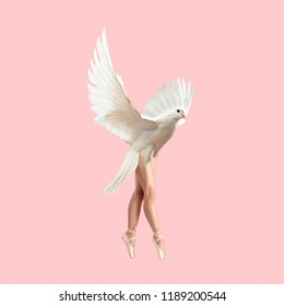 Modern Art collage. Concept Ballerina Dove on pink background.
