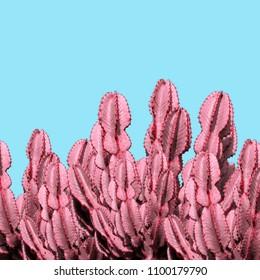 Modern art collage. Neon Cactus art
