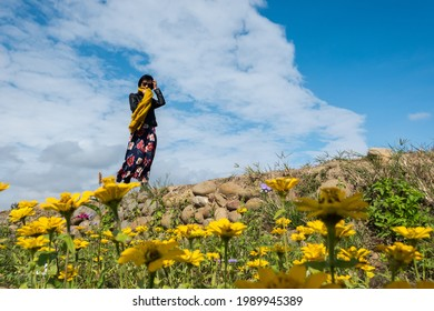 modern Asian woman walking at the colorful cosmo flowers farm