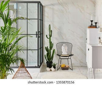 Modern bath room interior, black grid shower vase of plant and cactus, bath accessory and sink style.