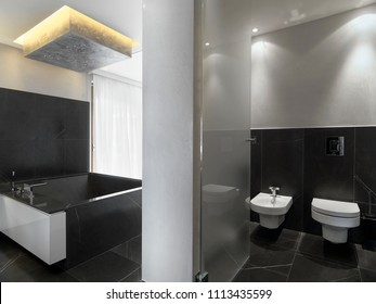 modern bathroom interior in the foreground the bidet and the toilet bowl in the background the masonry bathtub covered wtih black marble