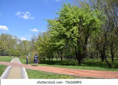 modern bike path in the park