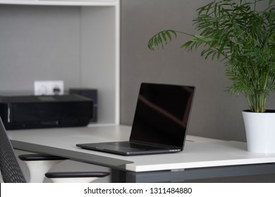 Modern black screen of laptop, greenery in pot on a table, equipment on booksshelve. Well-organized ergonomics of work place in the office with natural daylighting.