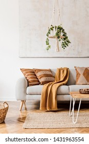 Modern boho interior of living room at cozy apartment with gray sofa, honey yellow pillows and plaid, plants, paintings, rattan basket and design personal accessories. Stylish home decor. Template.