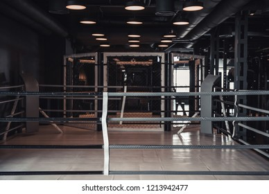 Modern boxing ring in the gym, lights on the ceiling are turned on