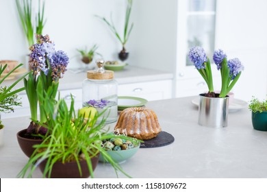 Modern bright kitchen with table, green flowers, cake, quail eggs, white furniture, blooming hyacinth flowers in pots. Concept of kitchen interior, spring time.
