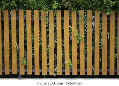 modern brown fence with plants background