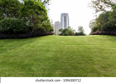 Modern building and lawn