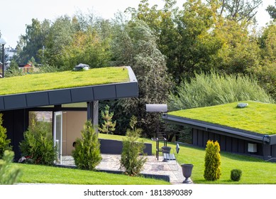 Modern buildings with lawns on the roof in the city eco park, roofs are covered with green grass. - Shutterstock ID 1813890389