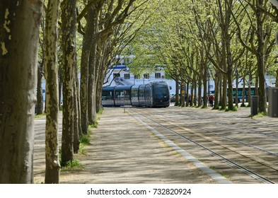 The modern cable-free tram runs on tracks along the spring alley of the platans in the French city Bordeaux.