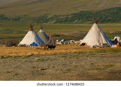 A modern camp of reindeer herders on the August day. Yamal, Russia