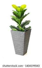 Modern Cement pots with plants , Modern flowerpot furniture