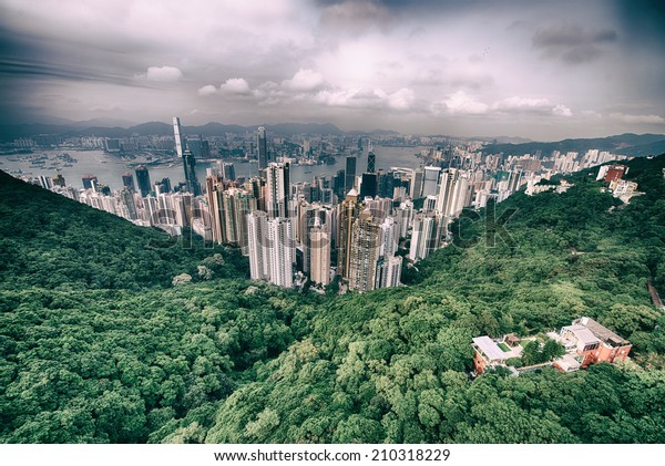 Modern city surrounded by forest and sea.