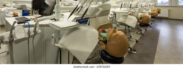 Modern classroom with dentistry anatomical models for students to practice on new medical university