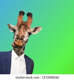 Modern collage. Concept suit man with giraffe head on color background.