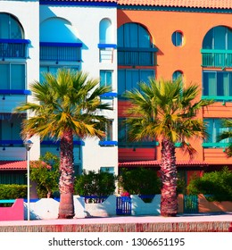 Modern and colorful apartment and palm in a mediterranean seaside town,Southern of  France