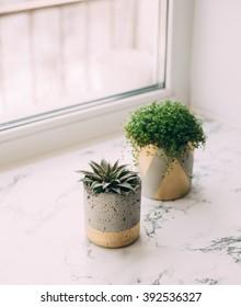 Modern concrete planter, geometric gold leaf with succulent