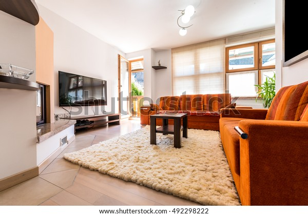 Modern Condo Apartment Living Room Sofa Stock Photo Edit Now 492298222