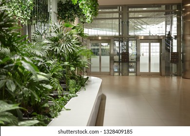 Modern contemporary interior design of international airport terminal with automatic glass doors in background and mix of indoor plants growing in foreground. Architecture and designs concept
