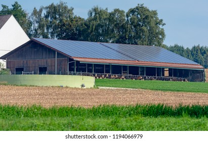 Modern cowshed with photovoltaic installation on the roof.