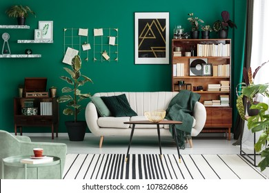 Modern design, botanic living room interior with cozy, beige sofa, antique furniture, home library, and teal green wall