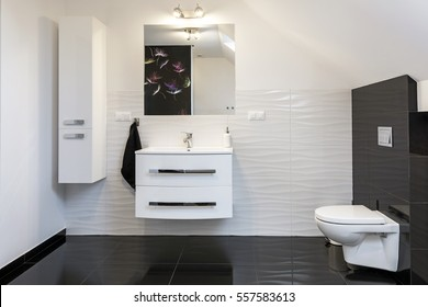 Modern design comfortable bathroom in black and white style