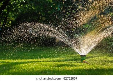 Modern device of irrigation garden. Irrigation system - technique of watering in the garden. Lawn sprinkler spraying water over green grass.
