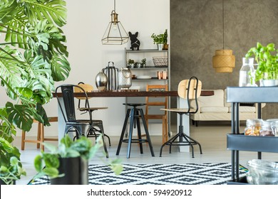 Modern dining room with monstera plant, carpet and kitchen cart