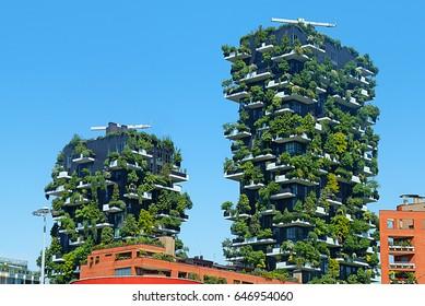 Imágenes Fotos De Stock Y Vectores Sobre Terraza Verde