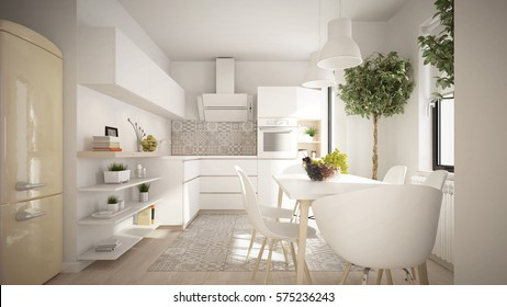 Modern and elegant kitchen interior (3 d render using 3 d s max)