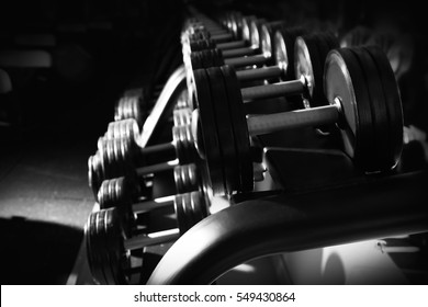 Modern equipment in gym. Black and white photo