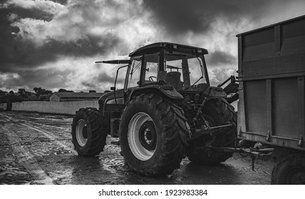Modern farm tractor in the field prepared for work on the farm .Agriculture and cattle and sheep livestock. Ecological production